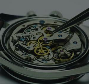 Interior Gears of Watch